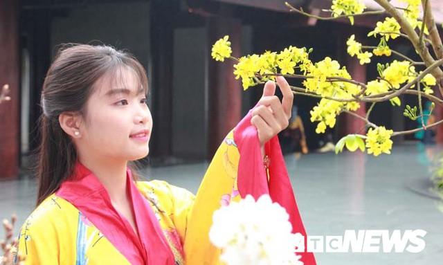 Ảnh: Ngắm hoa anh đào Nhật Bản, mai vàng đua sắc ở non thiêng Yên Tử - Ảnh 8.