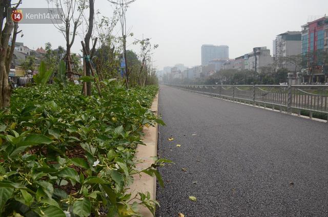 Hà Nội: Cận cảnh tuyến đường dài 4km cạnh sông Tô Lịch chỉ dành cho người đi bộ và xe đạp - Ảnh 8.