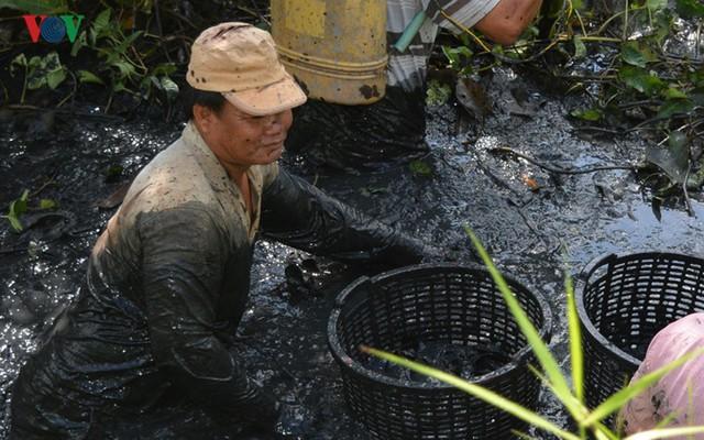Thu tiền triệu từ cá đồng thiên nhiên nơi Đất Mũi – Cà Mau - Ảnh 6.