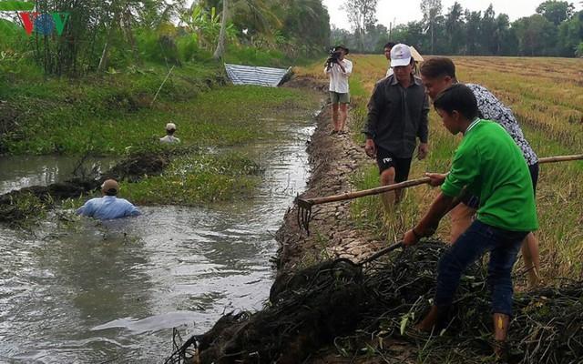 Thu tiền triệu từ cá đồng thiên nhiên nơi Đất Mũi – Cà Mau - Ảnh 7.