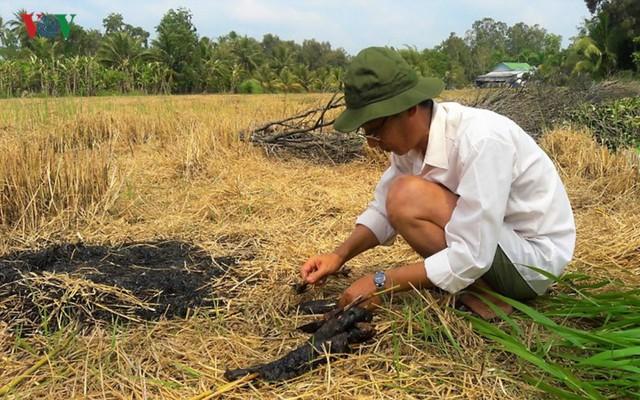 Thu tiền triệu từ cá đồng thiên nhiên nơi Đất Mũi – Cà Mau - Ảnh 9.
