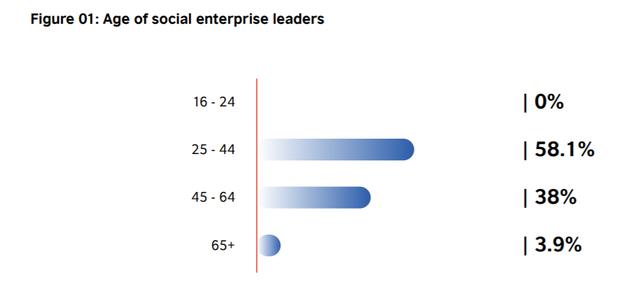 Những con số gây bất ngờ về doanh nghiệp xã hội ở Việt Nam - Ảnh 1.