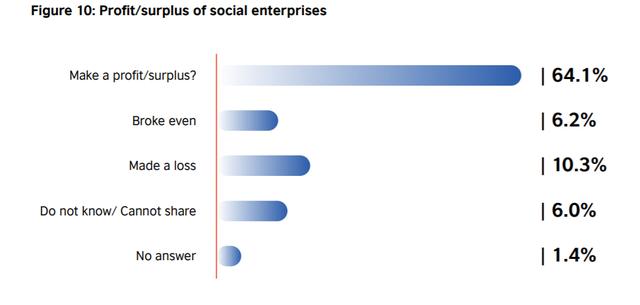 Những con số gây bất ngờ về doanh nghiệp xã hội ở Việt Nam - Ảnh 2.