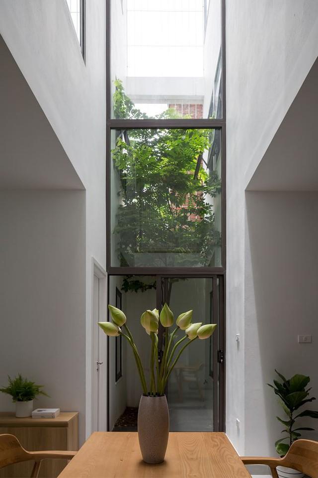 Nhà trong ngõ hẹp vẫn đẹp và tràn ngập ánh sáng - Ảnh 2.
