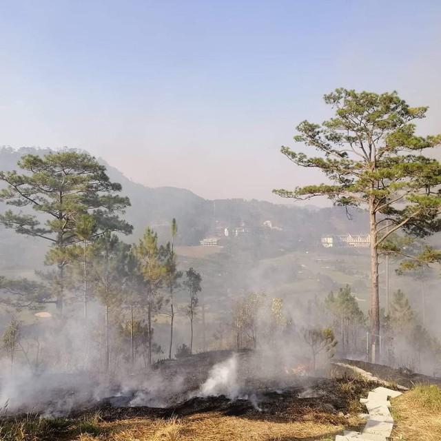 Homestay nổi tiếng nhất nhì ở Đà Lạt bị cháy lớn, nhiều du khách hoảng loạn - Ảnh 5.