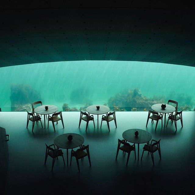 Nhà hàng dưới nước đầu tiên tại châu Âu gây sốt trên toàn thế giới: Đầu tháng 4 mới khai trương nhưng đã kín lịch đặt chỗ đến tận tháng 9 - Ảnh 18.