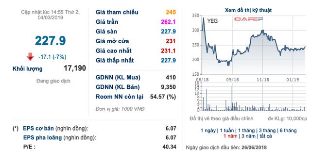 Cổ phiếu Yeah1 giảm sàn sau sự cố lớn liên quan đến YouTube - Ảnh 1.