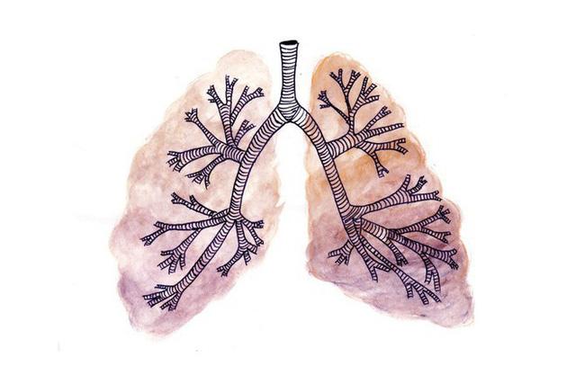 Sự kì dị của ung thư: Khi lá phổi bị biến thành dạ dày và ruột - Ảnh 1.