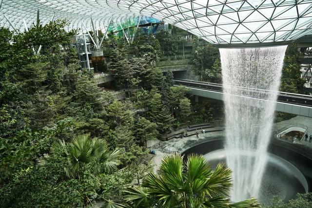 Trải nghiệm ở sân bay tốt nhất thế giới, nơi có cả cánh rừng và thác nước trong khuôn viên - Ảnh 1.