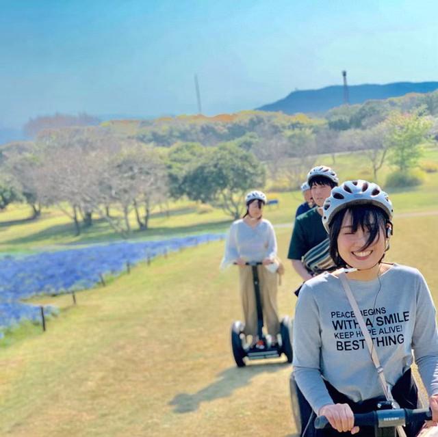 Thiên đường hoa gây sốt Nhật Bản: Hàng cây anh đào kết hợp rừng hoa mắt xanh đẹp như một giấc mơ - Ảnh 6.