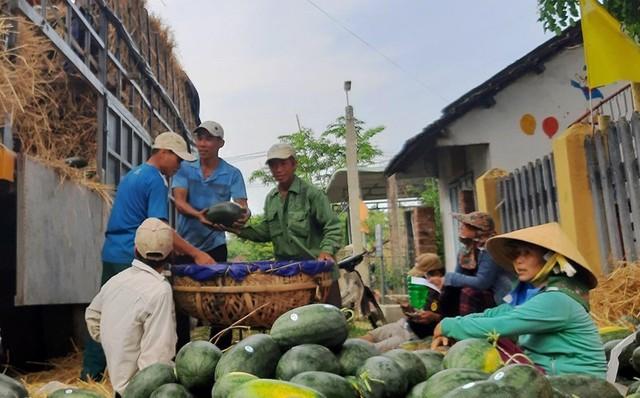 Lý giải dưa hấu trồng ở Việt Nam được lên tem Trung Quốc tại vườn - Ảnh 3.