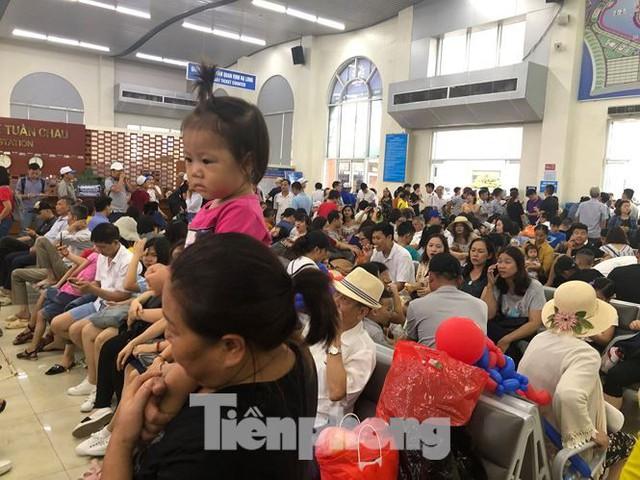 Chen chân mua vé tham quan vịnh Hạ Long bất chấp mưa tầm tã - Ảnh 3.