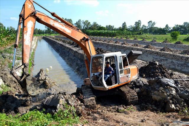 Nông dân trồng mít Thái trên đất lúa: Ồ ạt dễ dẫn đến kết quả thảm bại - Ảnh 5.