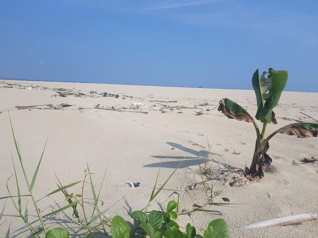 Cận cảnh hòn đảo lạ mới xuất hiện ngoài biển khiến chính quyền Quảng Nam lúng túng - Ảnh 4.