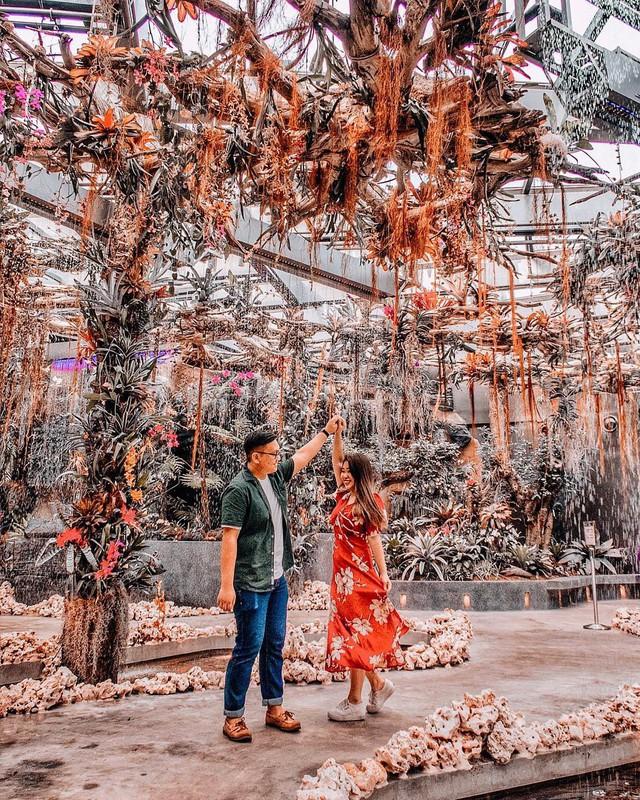 """Sau Jewel Changi, Singapore lại có thêm """"kỳ quan"""" vườn hoa treo khổng lồ khiến dân tình phải ngước lên """"mỏi cả cổ"""" để ngắm nhìn - Ảnh 23."""