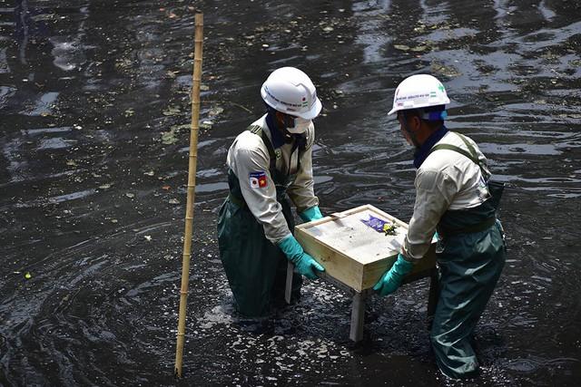 Chuyên gia Nhật giữa trưa lội nước, sông Tô Lịch chờ đón điều bất ngờ - Ảnh 13.