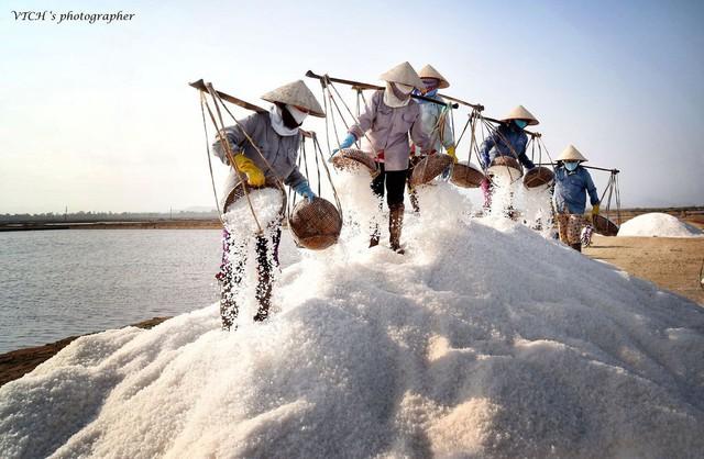 Ngành muối khốn khổ vì hàng nhập khẩu và biến đổi khí hậu - Ảnh 1.