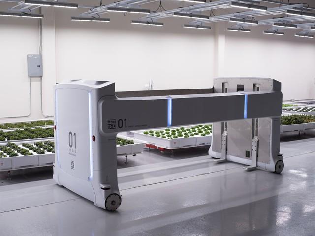 Robot trồng rau đưa cuộc sống viễn tưởng vào đời thực - Ảnh 3.