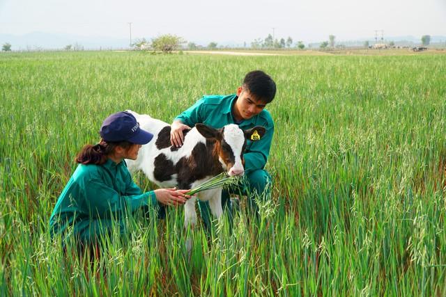 Vinamilk bắt tay với doanh nghiệp Lào, Nhật Bản, khởi công xây dựng tổ hợp resort bò sữa organic 5.000ha tại Lào - Ảnh 2.