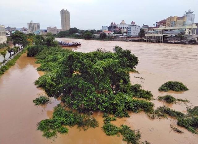 Mưa lớn ở Móng Cái, nhiều đò sắt bị nhấn chìm trong lũ - Ảnh 2.