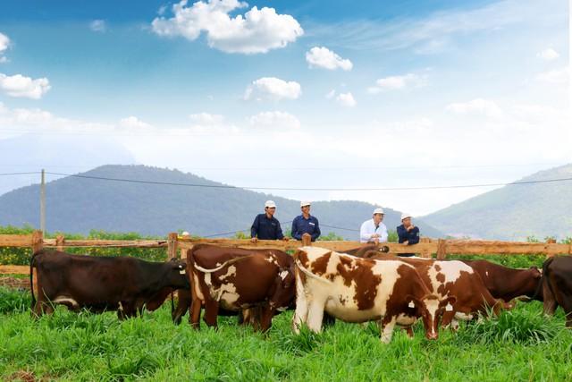 Khám phá trang trại Vinamilk Organic chuẩn châu Âu trên cao nguyên Đà Lạt - Ảnh 6.