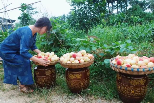 Nữ giám đốc doanh nghiệp quyết định sống cho bản thân sau 40 tuổi bằng cách nghỉ việc về quê trồng hoa - Ảnh 22.