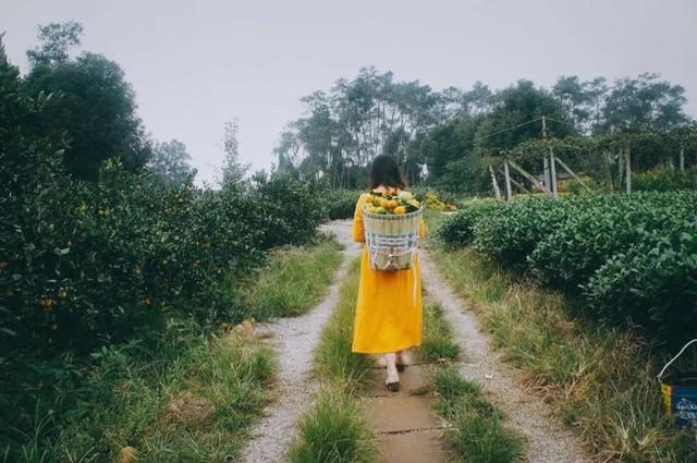 Nữ giám đốc doanh nghiệp quyết định sống cho bản thân sau 40 tuổi bằng cách nghỉ việc về quê trồng hoa - Ảnh 25.