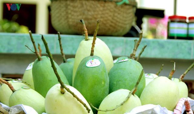 6 loại quả tươi của Việt Nam đã xuất khẩu sang Mỹ - Ảnh 1.