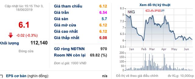Lỗ 100 tỷ trong quý 1, Nam Kim (NKG) vẫn đặt chỉ tiêu 295 tỷ đồng LNST năm 2019 - Ảnh 3.