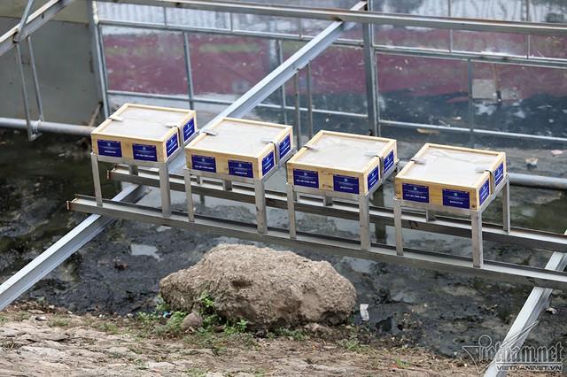 Lạ mắt phân hủy bùn sông Tô Lịch bằng đá núi lửa Nhật Bản - Ảnh 2.