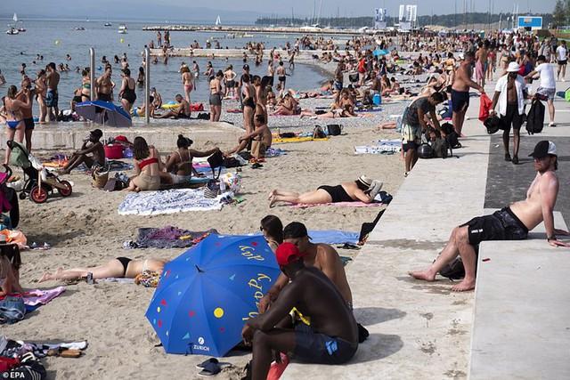 """Ảnh: Châu Âu quay cuồng trong đợt nắng nóng kỷ lục như """"địa ngục"""" - Ảnh 8."""