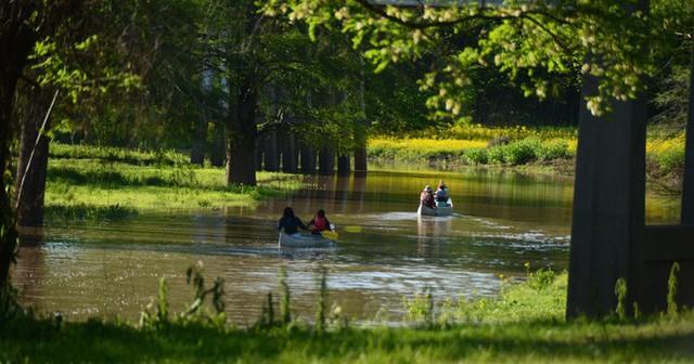 """Tin buồn ngày Môi trường thế giới: 2/3 các dòng sông toàn cầu đang """"nhiễm độc"""" thuốc kháng sinh, có nơi cao gấp 300 lần mức tiêu chuẩn - Ảnh 4."""