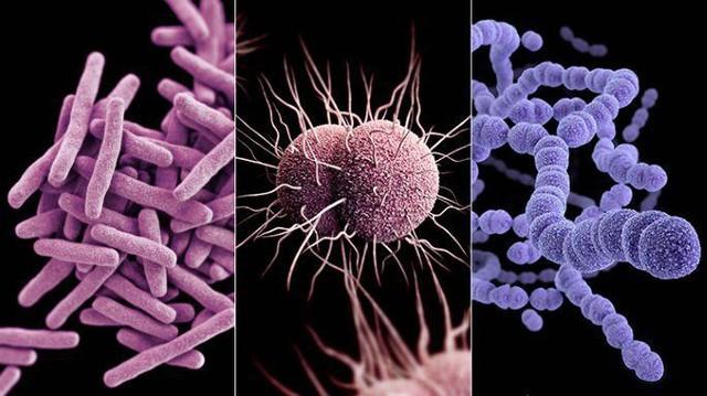 """Tin buồn ngày Môi trường thế giới: 2/3 các dòng sông toàn cầu đang """"nhiễm độc"""" thuốc kháng sinh, có nơi cao gấp 300 lần mức tiêu chuẩn - Ảnh 8."""