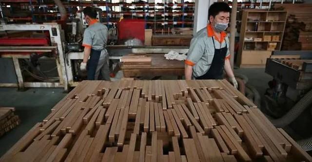 Nhà nhập khẩu gỗ của Trung Quốc khốn khổ vì chiến tranh thương mại - Ảnh 1.