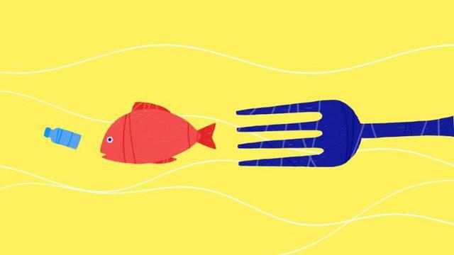 Mỗi người Mỹ đang ăn 74.000 mảnh rác nhựa mỗi năm - câu chuyện đáng buồn đang xảy ra trên toàn thế giới - Ảnh 1.