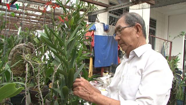 Trồng hoa lan trên 100m2 đất nông nghiệp cho thu nhập trăm triệu/năm - Ảnh 1.