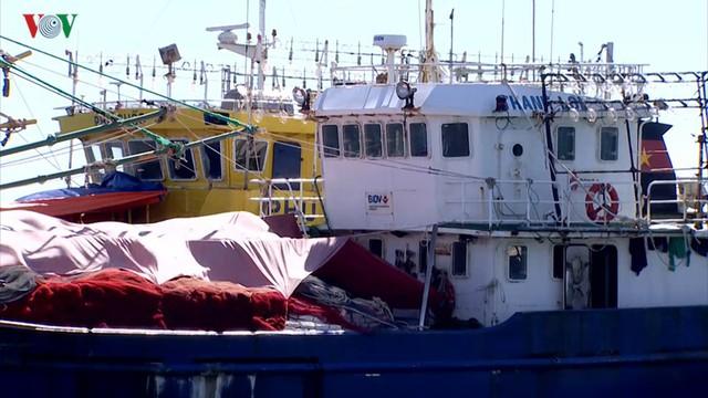 Gia tăng nợ xấu từ chương trình vay vốn tàu đóng tàu theo Nghị định 67 - Ảnh 1.