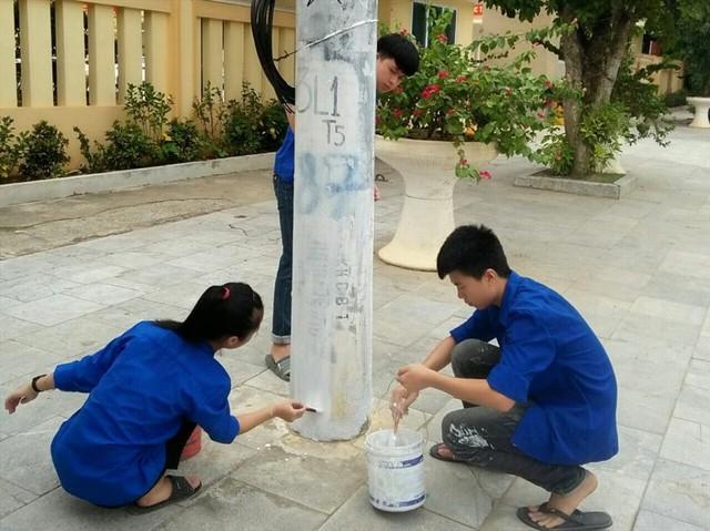 """Thanh Hóa: Hàng trăm cây cột điện """"bỗng nở hoa - Ảnh 5."""