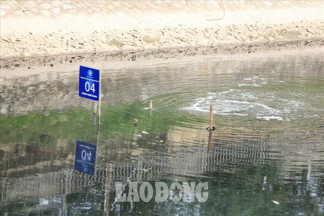 Nước sông Tô Lịch đen trở lại, xuất hiện cá chết trắng nổi lềnh bềnh - Ảnh 9.