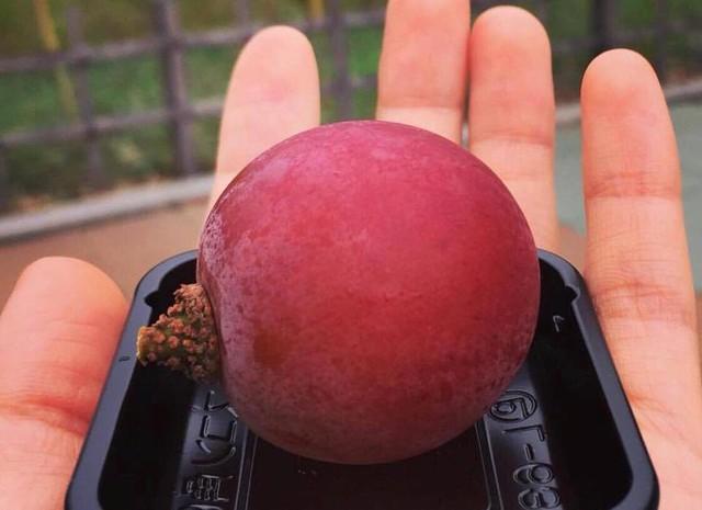 Chùm nho 250 triệu đồng, dân giàu Việt mua 1 quả về ăn thử - Ảnh 3.