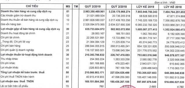 Ảnh hưởng bởi sự cố ERP, lợi nhuận PNJ sụt giảm trong quý 2/2019 - Ảnh 2.