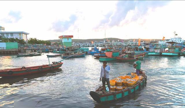 Mãn nhãn tại cảng cá lâu đời ở đảo ngọc Phú Quốc - Ảnh 2.