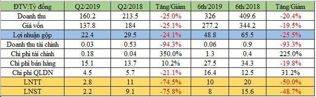 Phân lân Ninh Bình (NFC): Lãi ròng quý 2 giảm 4 lần so với cùng kỳ - Ảnh 1.