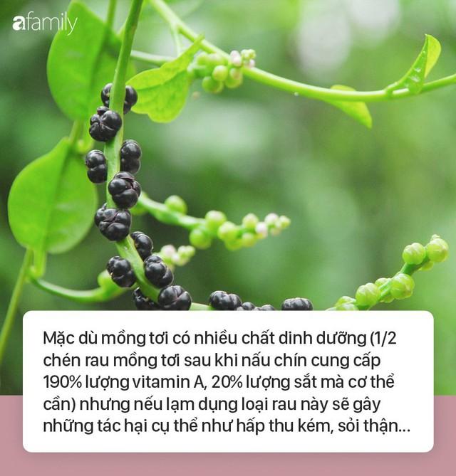Ăn rau mồng tơi mà không nắm được những lưu ý cực quan trọng này sẽ gây hại sức khỏe - Ảnh 1.