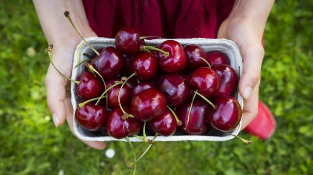 """Cherry """"đắt xắt ra miếng"""", nếu biết hết tác dụng vi diệu của quả này dám cá nhiều người sẽ không tiếc tiền mua ăn - Ảnh 1."""