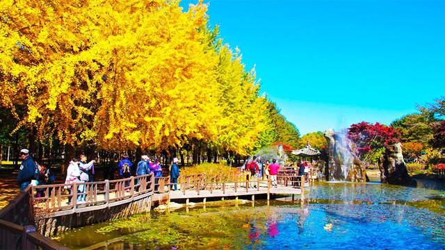 Du lịch Hàn Quốc mùa hè này: Những lời khuyên nhỏ nhưng có võ bạn cần dắt túi để có chuyến đi ý nghĩa nhất! - Ảnh 2.