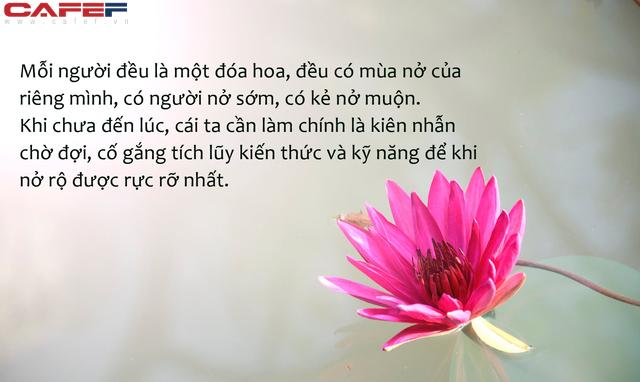 Bông hoa không kết thành quả ngọt mới là bông hoa đẹp nhất: Thành quả cũng chỉ là một phần, quan trọng ta có hạnh phúc hay không - Ảnh 2.