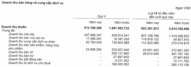 Hoàng Anh Gia Lai (HAG) báo lỗ ròng 539 tỷ trong quý 2, đang mượn tạm bầu Đức hơn 2.500 tỷ đồng - Ảnh 1.