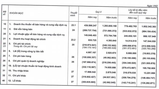 Nối gót mẹ, HAGL Agrico lỗ hơn 737 tỷ nửa đầu năm, đang mượn người nhà hơn 4.000 tỷ đồng - Ảnh 2.