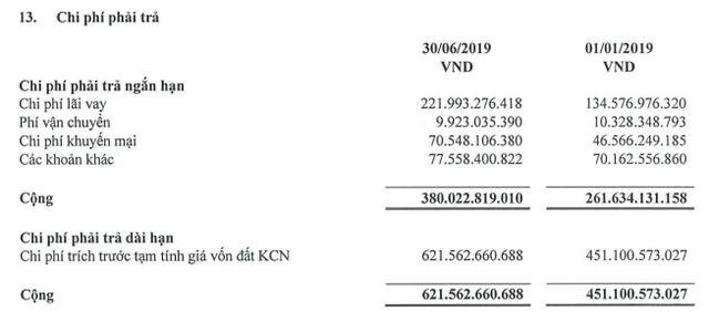 Hòa Phát đã rót gần 43.000 tỷ vào Dung Quất, mảng nông nghiệp, bất động sản tăng 50% doanh thu - Ảnh 4.